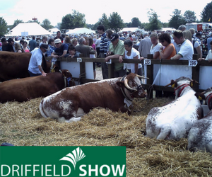 Driffield Show